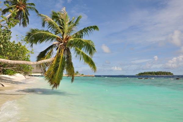 Seebestattungen Krautsand Karibik
