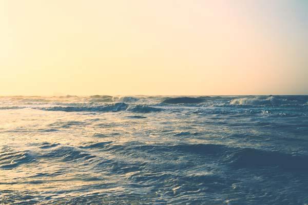 Seebestattungen Krautsand Nordsee